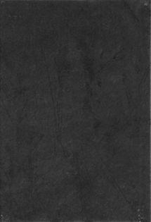 КОКО ШАНЕЛЬ ПО7КК202 Плитка низ на черном черная