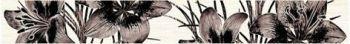 """56-03-15-081(86-02-13-81) Бордюр """"Piano"""" коричневый"""